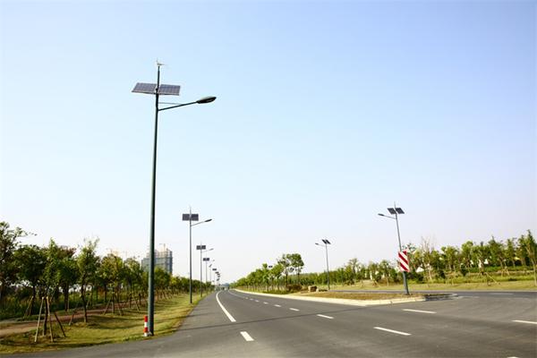路灯工程案例3